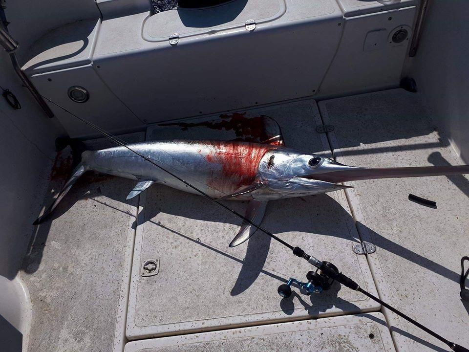 XTREME FISHING SLOW PITCH SETUP (2)