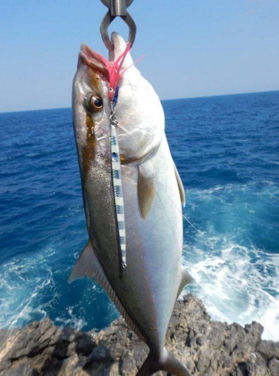 XTREME FISHINGJIGS