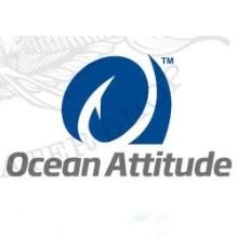Ocean Attitude