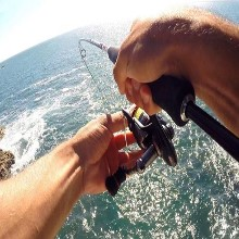 LRF/Micro Jigging